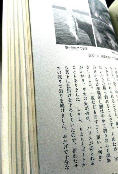 コラムのページは紙の色がグレー。