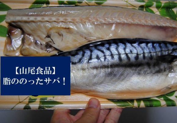 山尾食品‗魚匠‗がんこおやじ‗千葉‗ノルウェー干物‗加工‗サバ‗大原 (キャッチアイ)