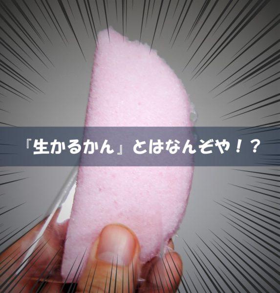 薩摩菓子処 とらや (創作生かるかん) (キャッチアイ画像)