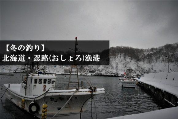 北海道小樽市・忍路(おしょろ)漁港で穴釣りは通用する?鶴亀温泉‗冬の釣り‗ブラクリ (キャッチアイ)
