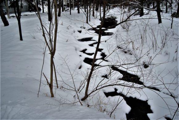 精進川の上の雪。幾何学的な模様にドキリとしました。