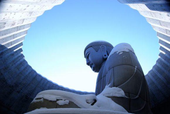 大仏様は見る角度によって厳しく見えたり、優しく見えたりします。