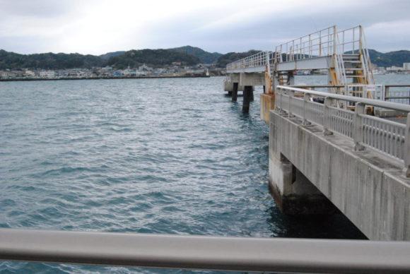 沖に近いので結構水深が深い。いろんな魚種がいるんだろうな。