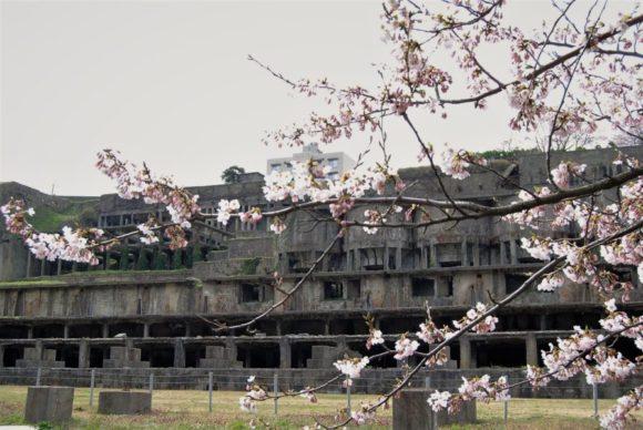 廃墟と桜。対比が美しい。