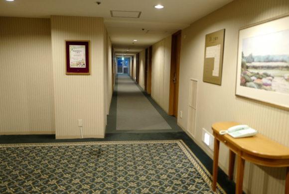 落ち着いた雰囲気のホテル。