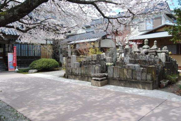 桜の木漏れ日にお地蔵さん、墓石も気持ちよさそう。