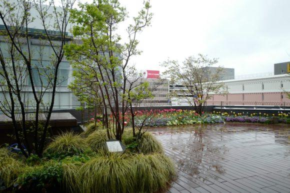 こちらは4階の美容室TOKIO gardenから見える景色(あいにくの雨ですが)。