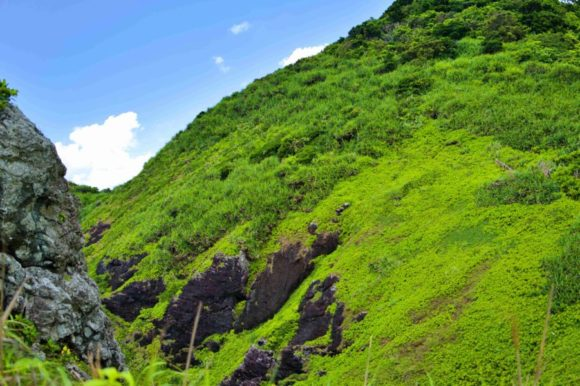 山側は崖です