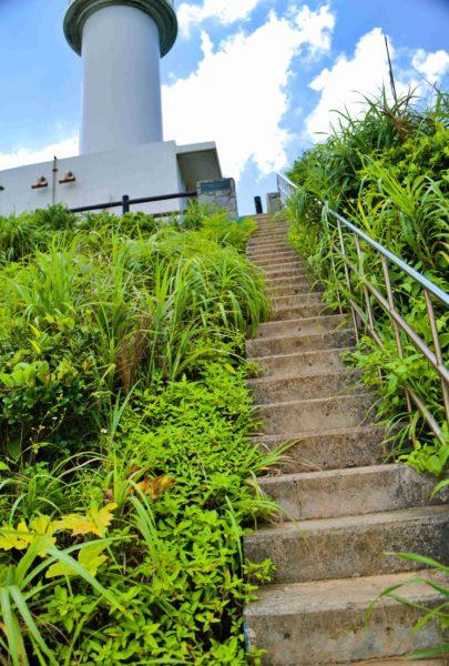 長~い階段を駆け上がる。躓かないようにね!