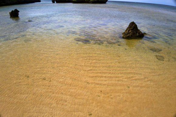 水が澄んでいてキレイ。