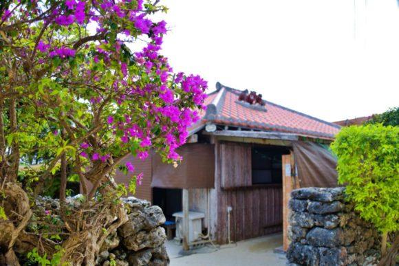 ブーゲンビリアがきれいな小浜荘玄関