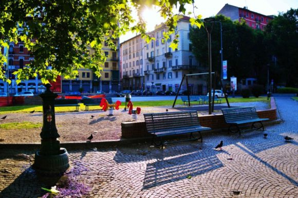 朝日に浮かぶ公園。