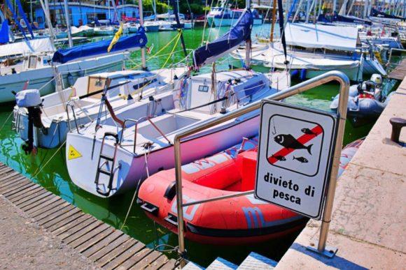 船着き場では釣りは禁止のようです。