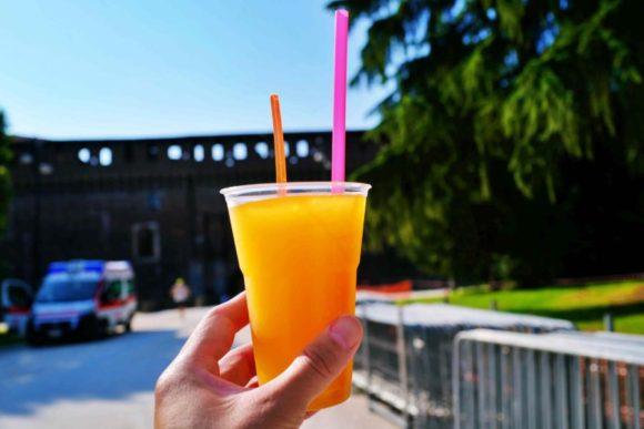 城外で買ったオレンジフレーズ(3ユーロ)