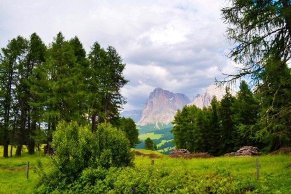 森の間から険しい山脈。パズルにありそうな構図。