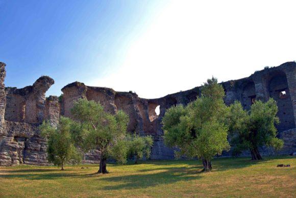 木々とローマの遺跡。木が人に見えなくもないな。