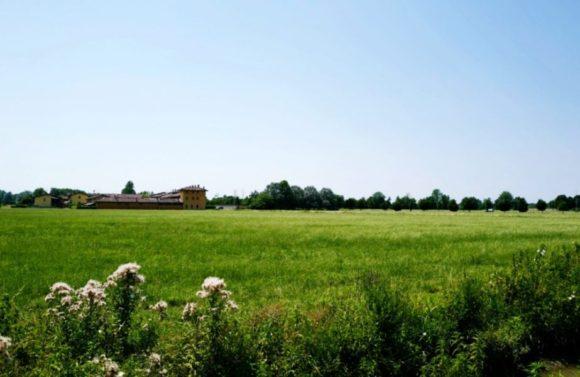 「Theイタリアの田舎」な光景。