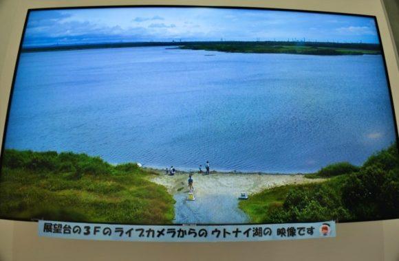 ウトナイ湖のライブ映像もあり、なかなか臨場感がある。