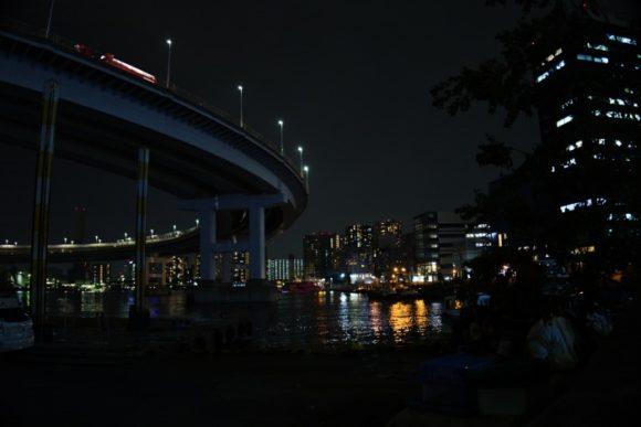 東京湾とループ部分。