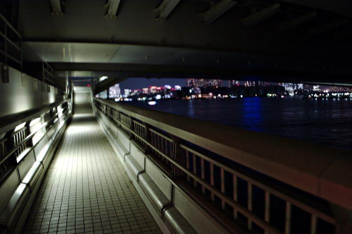 橋の下は少し怖い雰囲気。