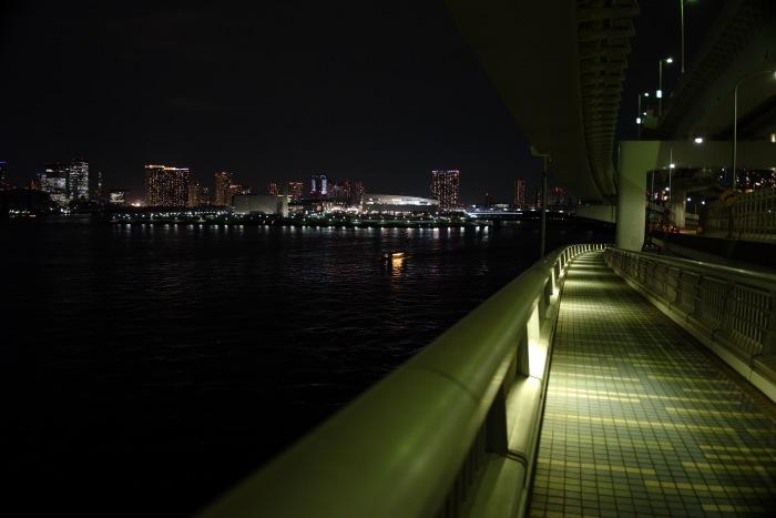 夜景と歩道。