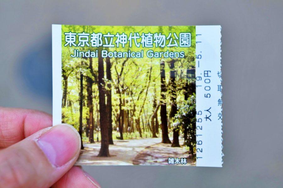2019年5月11日は新緑の雑木林。