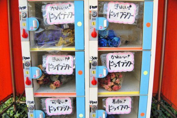 かわいいドライフラワー300円~500円。