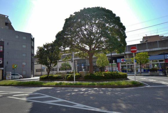 本千葉駅前のシンボルツリーが印象的。