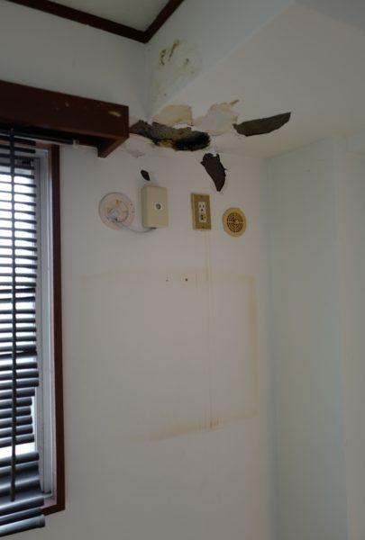 天井付近にもコンセント穴があるが、下にもアンテナとコンセントがある。