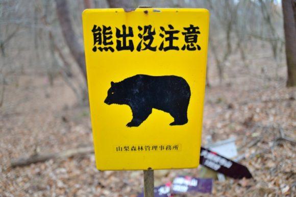熊いるのかよ…