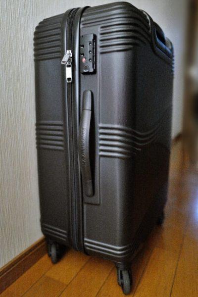 カメレオンのスーツケース「TEKU」