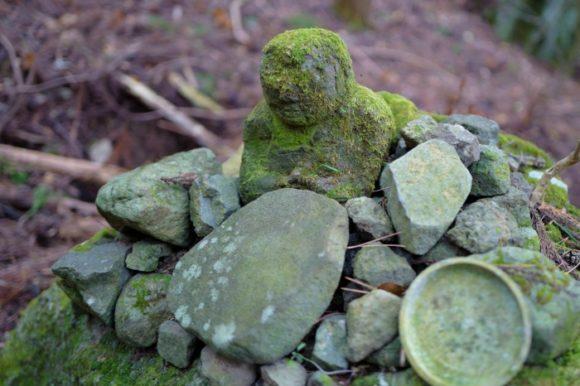 苔に覆われ瞑想しているように見える。