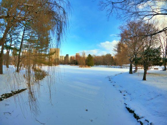 雪で埋もれる中島公園の池。