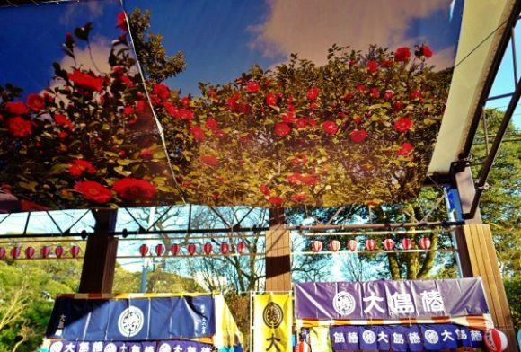 椿祭りのメイン会場だ。