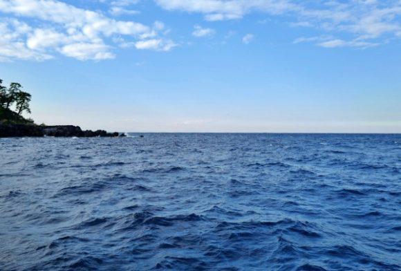 波が高い泉津漁港。