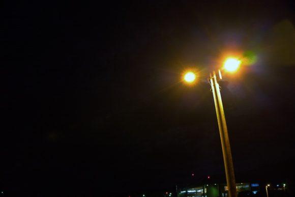 常夜灯の下で夜釣り開始!