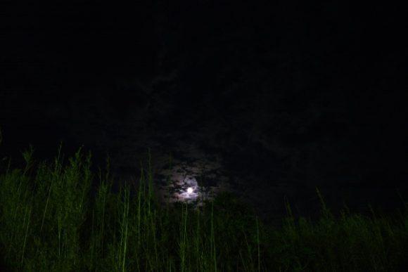 満月一歩手前の月。