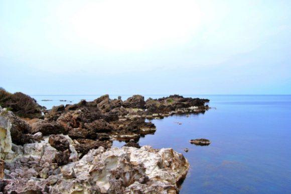 佐渡島の磯。