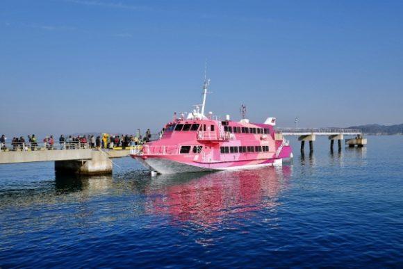 ピンク色はセブンアイランド 愛だ。