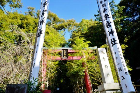 いい感じに映える来宮神社。