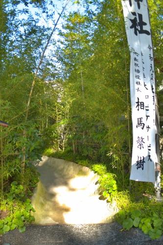 細い道を通って大楠へ行こう。