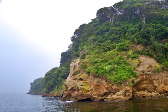 崖を横目に桟橋を進む