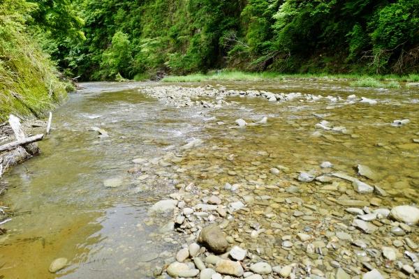 川のせせらぎが心地いい。