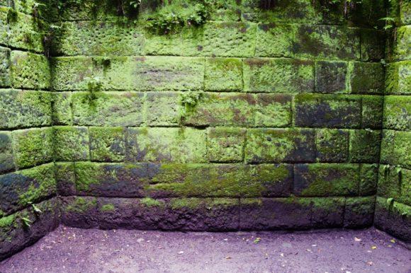 苔生した石壁も神秘的だ。