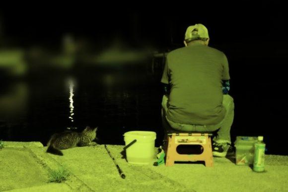 おじいさんと魚を狙う猫。