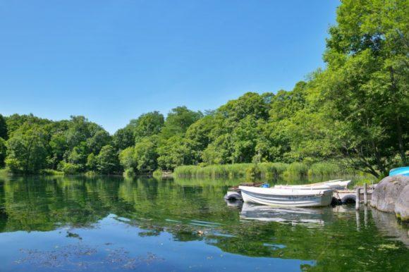 鳥沼公園の沼とボート。