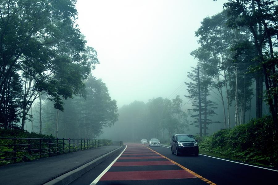 もやもや霧が凄い支笏湖への道。