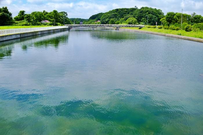 茂漁川温水溜池。