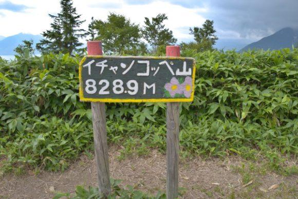 かわいらしい山頂標識