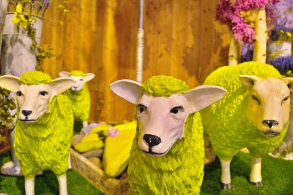 ハウス内に入ると緑色の羊!